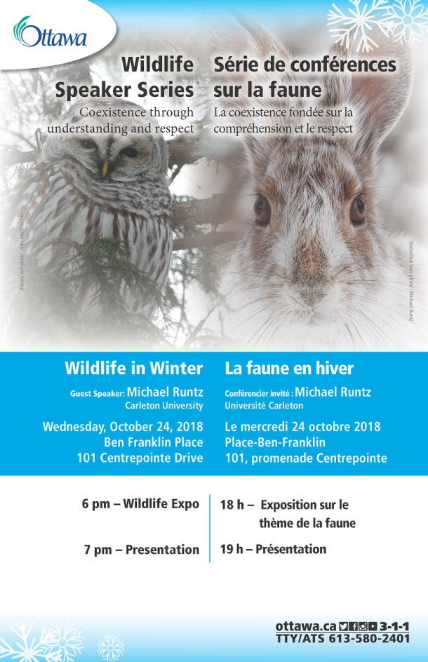 2018-10-11 Wildlife in Winter_Poster_FINAL
